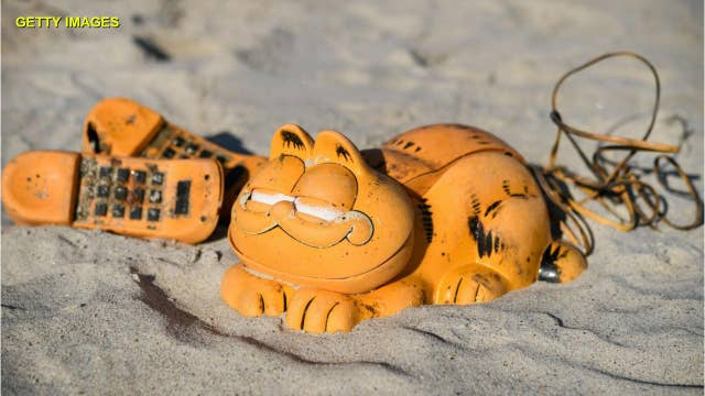Mystery of plastic Garfield novelty phones washing up solved