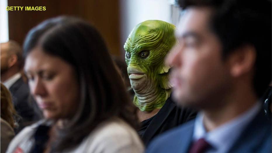 'Swamp creatures' crash Trump nominee's Senate confirmation hearing