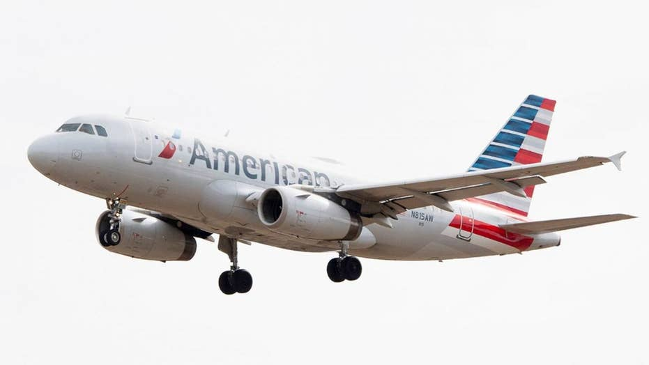 American Airlines flight forced to land after bird strike