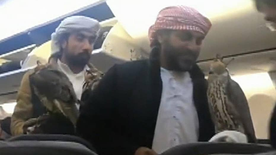 Video of men boarding plane carrying falcons goes viral