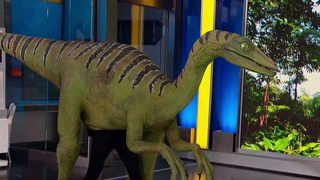 Jurassic World Live Tour makes first stop on 'Fox & Friends'