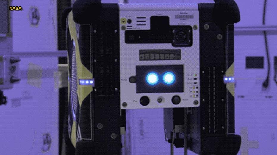 NASA is sending 'robotic bees' to space