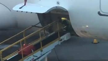 Baggage handler spotted doing push-ups in cargo of EasyJet plane