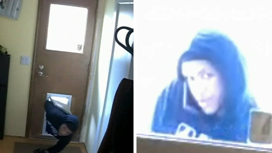 Oregon deputies looking to ID suspect caught on camera using doggie door to burglarize home