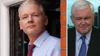 Newt Gingrich: Julian Assange arrest shows US is 'going to come after you until we get you'