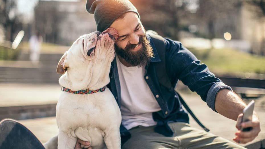 Study: Beards are dirtier than dog fur