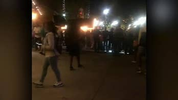 Fight involving up to 300 teenagers breaks out at Worlds of Fun amusement park