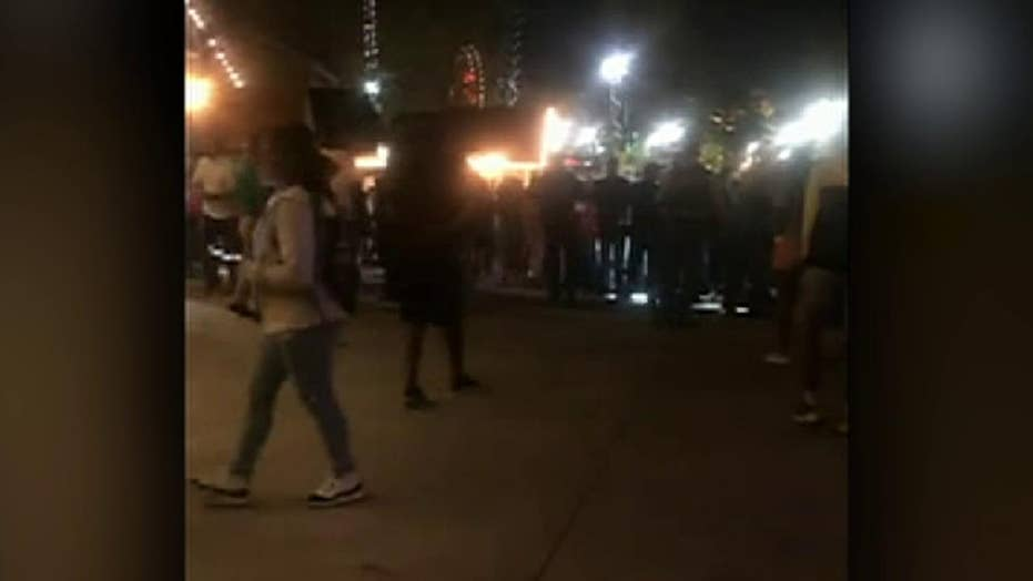 Raw video: Fight breaks out at theme park