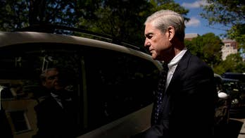 Does reaction to the Mueller report reveal the impact of the populist revolution that swept Trump to power?
