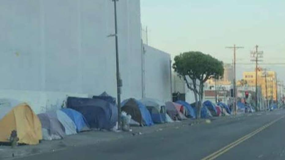Homeless camps line streets of sanctuary city Los Angeles