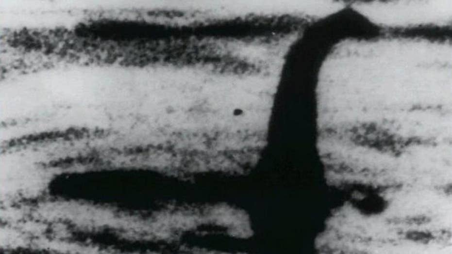 Loch Ness monster mystery solved? Study claims ancient dinosaur discovery influenced delusion