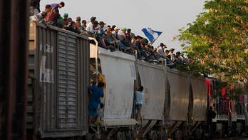 National Border Patrol Council says border crisis 'falls squarely on the hands of Congress'