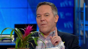 Gutfeld on Take Your Child to Work Day