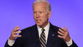 Warren, Sanders target Biden after former VP enters 2020 race