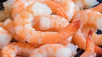Shocking study reveals cocaine, other drugs found in shrimp