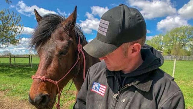 Veteran starts horse therapy company to help other veterans