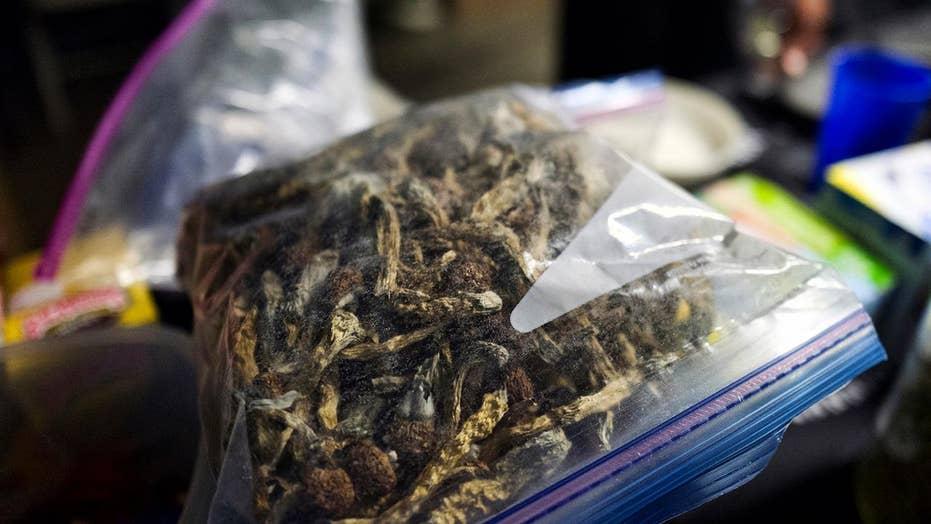 Denver mulls decriminalizing hallucinogenic mushrooms