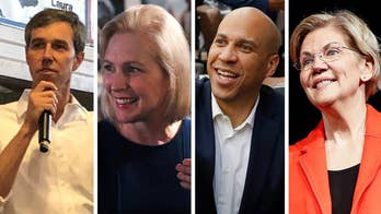 2020 Democratic presidential primary field grows