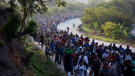 Hundreds of migrant caravan members found to have US criminal histories: DHS files