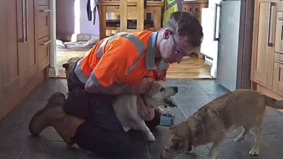 Man saves pet dog from choking on piece of cheese using Heimlich maneuver
