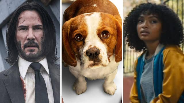 New in Theaters: 'John Wick: Chapter 3,' 'A Dog's Journey' and 'The Sun Is Also a Star'