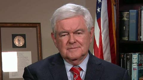 Newt Gingrich: The hardcore left believes things that I think are crazy