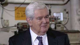 Newt Gingrich: Biden is a 'doofus,' will become 'very radical Democrat' before face-off with Trump