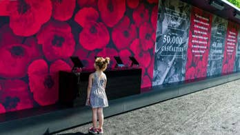 USAA honoring fallen US heroes with wall of 645,000 poppies in DC
