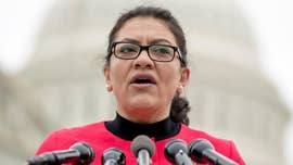 Trump mocks Tlaib for 'screaming' at 2016 speech: 'This is not a sane person'