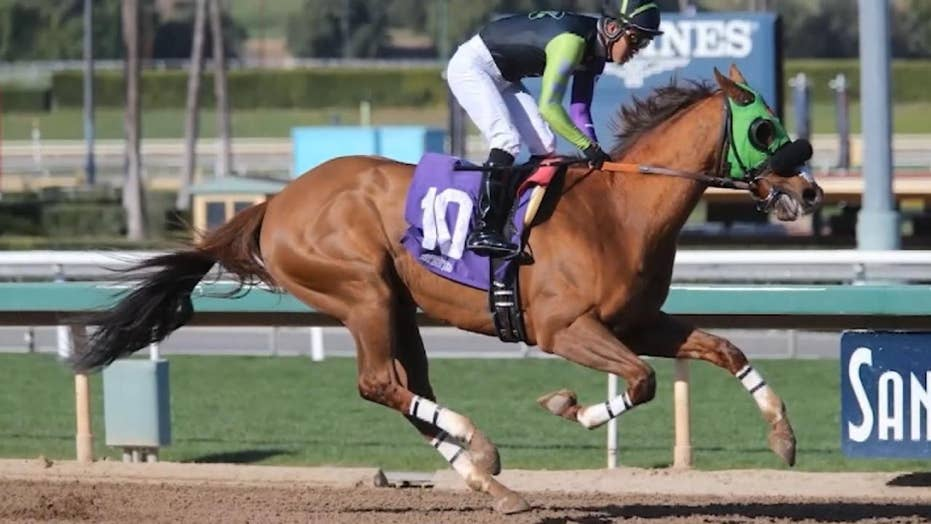 26th Horse Dies At Santa Anita Racetrack In California