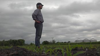 Another blow to farmers as Mississippi River flooding impacts production