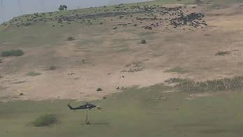 Arkansas National Guard airlifts hay bales to stranded cattle on video