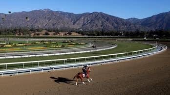 Two horses die within days at Santa Anita racetrack in California, park rejects request to close