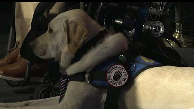 Canine Companions for Independence honors PenFed CEO and president James Schenck