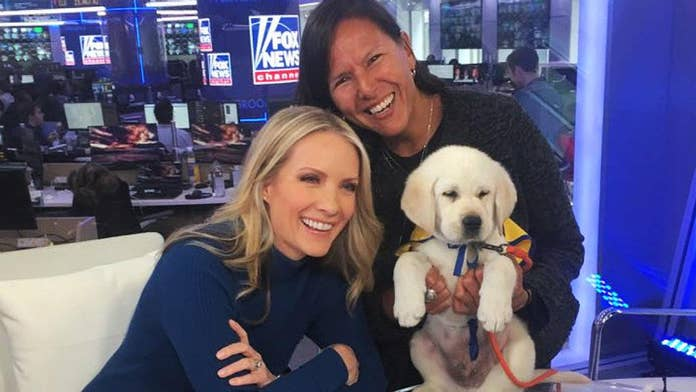 The Daily Spike: Disabled veteran shares the importance of service dogs at Hearts and Heroes gala