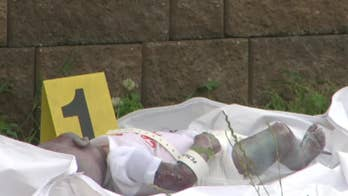 'Dead infant' found outside New York City park turns out to be life-like doll