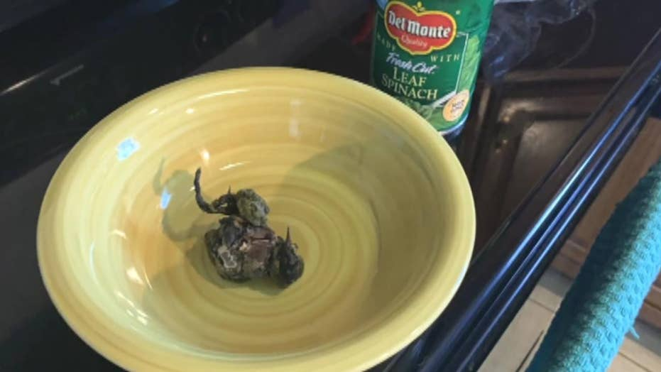 Woman finds dead bird in Del Monte spinach can