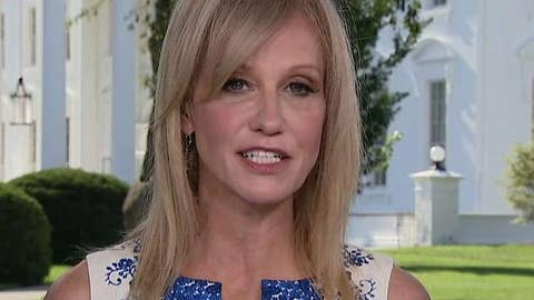 Conway: Dems want to put a big roll of masking tape over my mouth because I helped elect Trump
