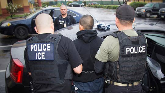 Deportee from Romania escapes from ICE agents at Chicago airport: reports