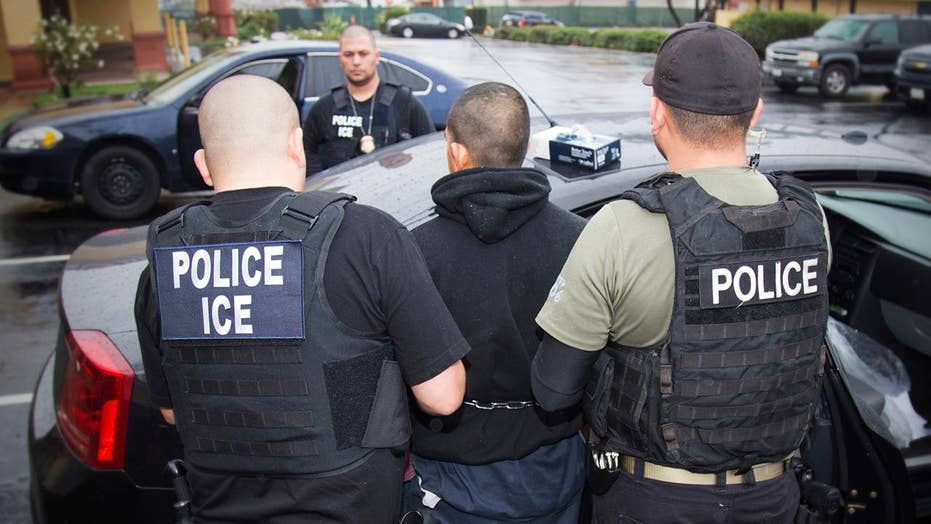 DHS secretary accused of opposing and leaking planned ICE raids