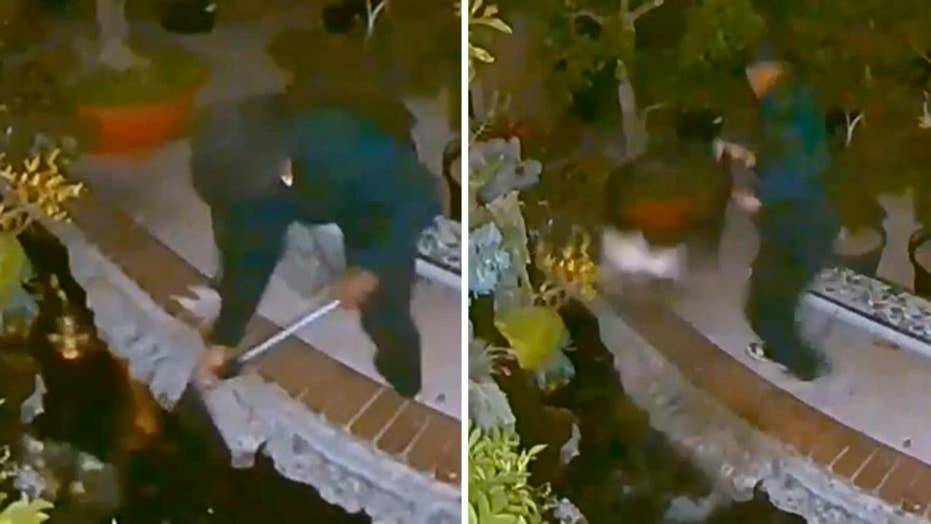 Man caught on camera stealing koi fish from a home in California