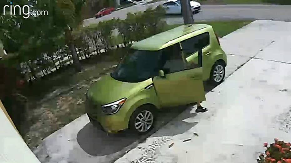 Stranger caught pooping in Florida driveway by Ring camera