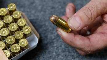 Ammo sales up 300 percent before bullet background checks take effect, Calif. store owner says