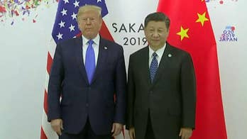Trump: Metting with Xi 'went better than expected'