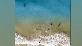 Shark lurking toward kids playing in ocean spotted by dad flying his drone