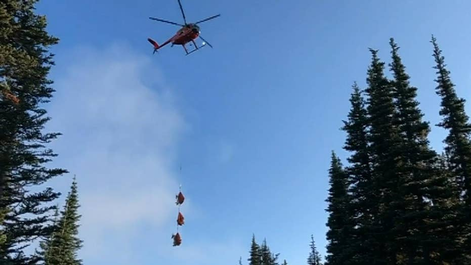 Washington wildlife officials airlift goats in ongoing relocation effort