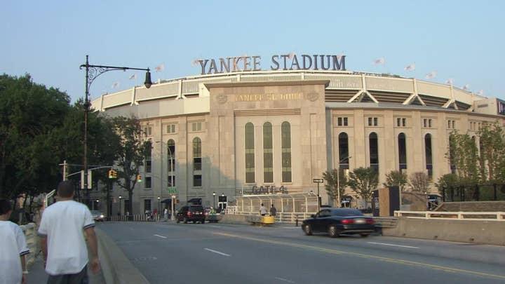New York's Yankee Stadium hit by swarm of 25,000 bees