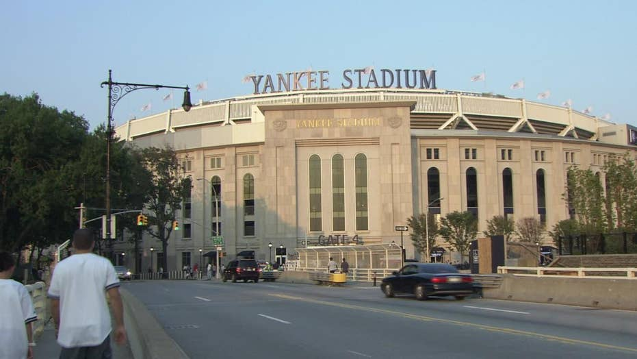 New York's Yankee Stadium hit by swarm of 25,000 bees