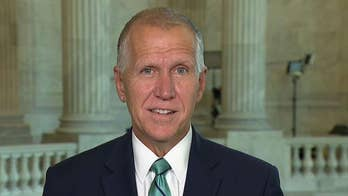 Sen. Thom Tillis says the media should focus on the extreme views of the 'squad'