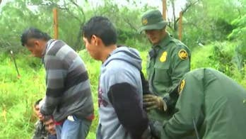 CBP rebuked by watchdog, whistleblowers for 'failure' to collect DNA from migrant detainees
